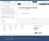 CULA 241 Sophomore Internship