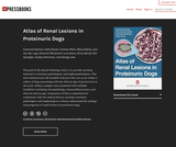 Atlas of Renal Lesions in Proteinuric Dogs