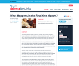What Happens in the First Nine Months?