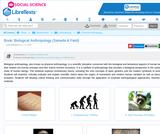Biological Anthropology (Saneda & Field)