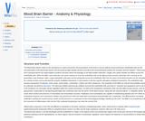 Blood Brain Barrier - Anatomy & Physiology